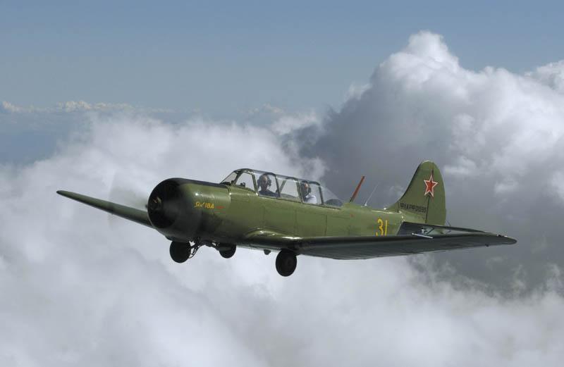P-gal-yak2-800x600